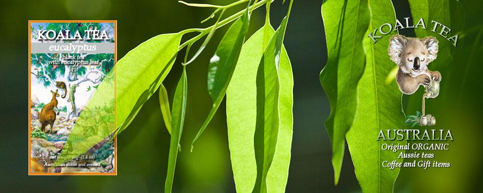 Eucalyptus Organic Tea from Koala Tea Company