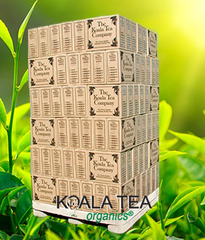 Koala Tea Wholesale supply