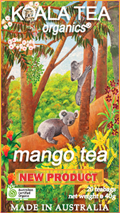organic mango tea new product